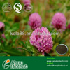 Natural Red Clover Extract Isoflavones,Biochanin A,Formononetin