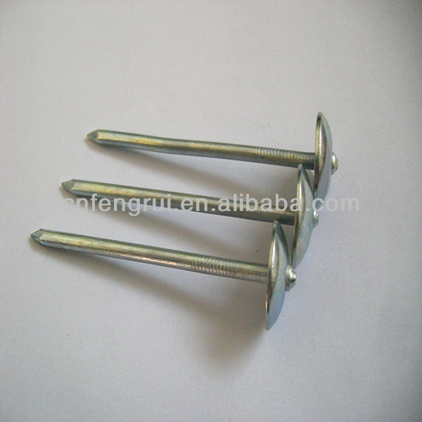 Ht sale color umbrella head roofing nail with twisted shank from manufacturer