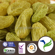 2015 new crop Best Quality Fruit Products Dried Green Sweet Raisin
