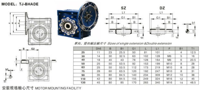 Permanent Magnet motor 12v with geared,dc motor