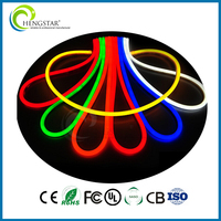 12v/24v/110v/120v/220v/230v/240v Cool White/Red/Blue/Green led neon light Indoor Outdoor led neon flex light