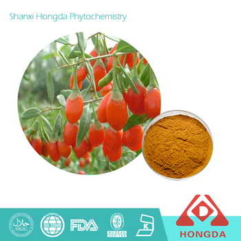 Ningxia Organic Wolfberry Extract Powder polysaccharides 50%