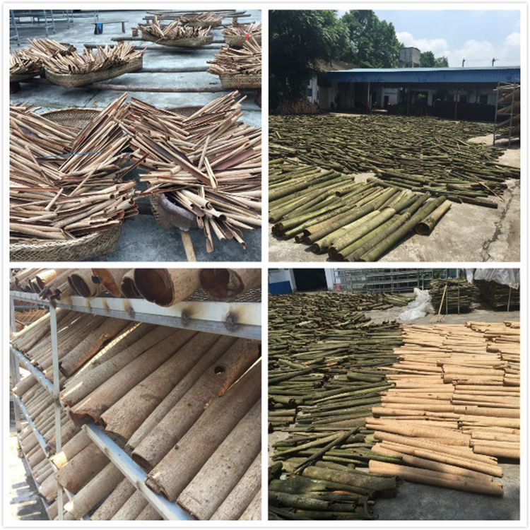 High quality natural Magnolia officinalis bark