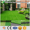 Cheap Landscaping Decoration Garden Artificial Simulation
