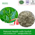 Green tea extract Epigallocatechin Gallate 98%