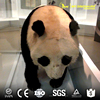 Cartoon character panda life size cartoon character