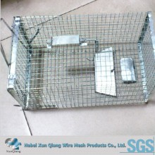 galvanized rat trap cage