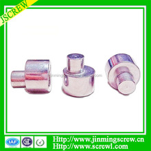 Decorative Cap Head Secure Rivets High Quality Eccentric Screws
