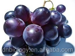 atural antioxidants Grape Seed P.E. 95% Proanthocyanidins; grape seed extract