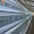 Poultry Equipment Supplier in South Africa Poultry Layer Cage Supply