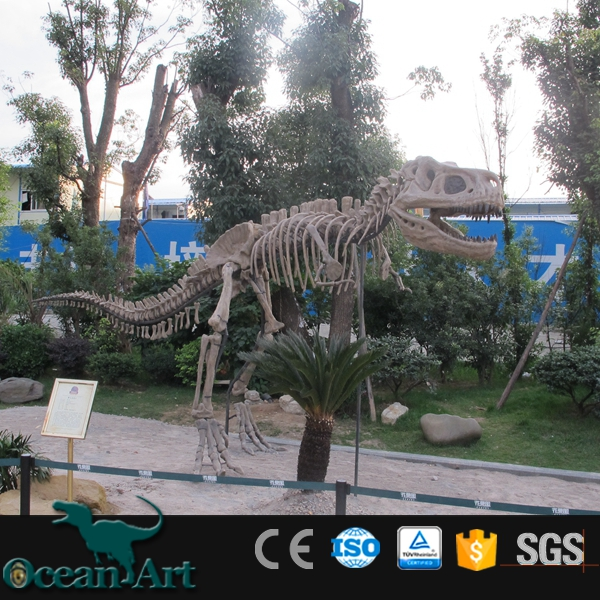 OAV23771 Attractive Natural Looking Handmade Real Dinosaur Skeleton