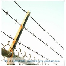 China direct factory barbed wire/ barbed wire fence/barbed wire on the top og fence