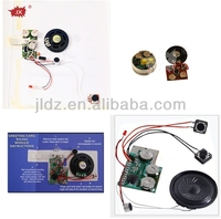 Push button activated recordable sound chip