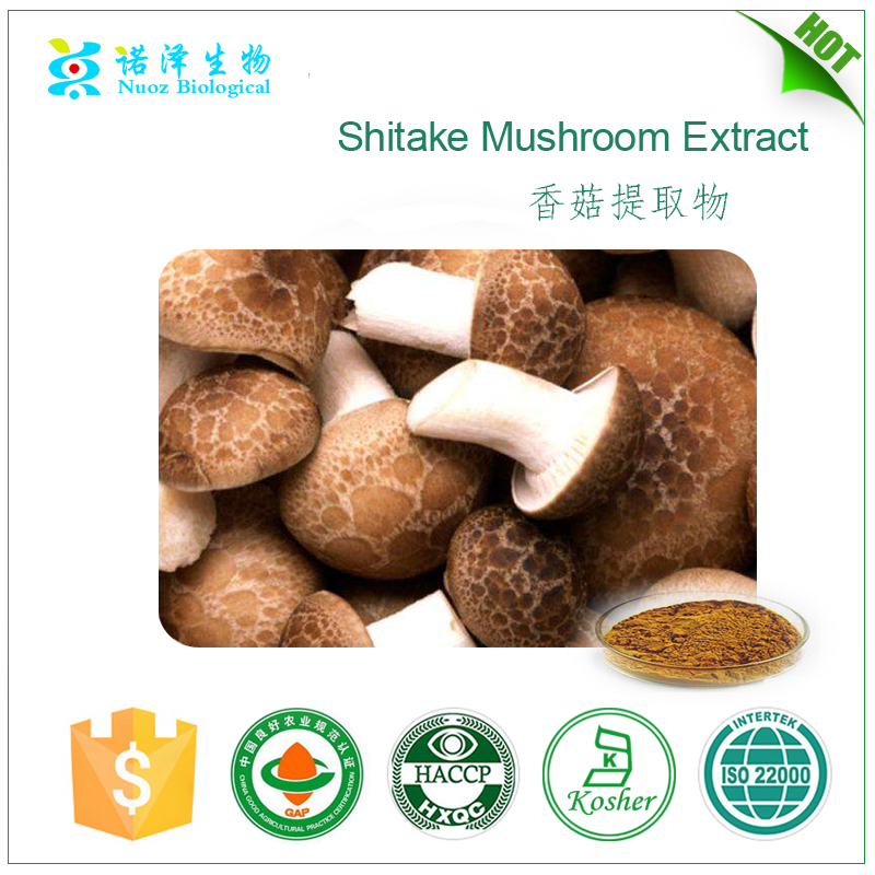 Chinese Products Shitake Mushroom Extract