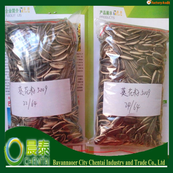 Different Types Of Sunflower Seeds American Type 5009 24/64 From Inner Mongolia