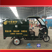 High quality three wheel gas powered trike for sale