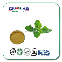 Hot selling Mentol Mint extract/Peppermint leaves extract in stock