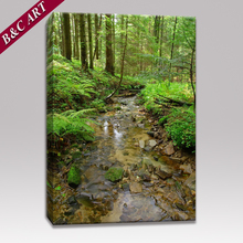 Natural Scenery Painting Green Forest Wall Sign Canvas Print for Study Room