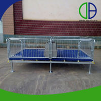 Competitive Price Hot Dip Galvanized Pig Cages Pig Feeding Equipment