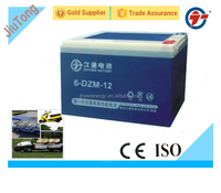 6-DZM-12 recharageable gel deep cycle VRLA battery for e-bike