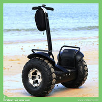 CE approval adult 2 wheels elerctrical golf scooter, lithium battery used car south korea