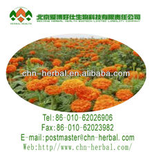 the extract of marigold with Lutein of Natural Pigment