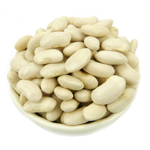 Wholesale supply china natural plant pure baishake white kidney bean canned food bean alubia vanilla beans