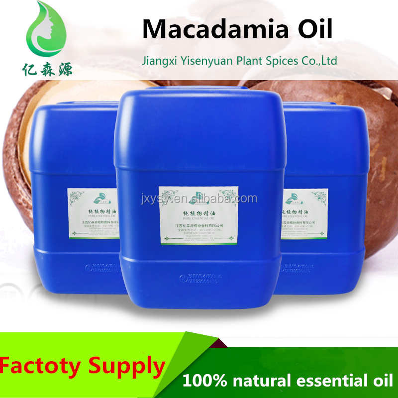 Bulk Wholesale Price of the Raw Macadamia Ternifolia Seed Oil Nut Oil For Aromatherapy Use