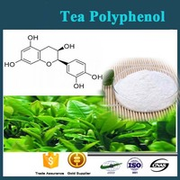 Natural Green Tea Extract Powder Polyphenols 20%-98% EGCG 10%-95% Catechins 10%-90% HPLC