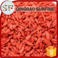 Dried bulk goji berries wholesale goji berry