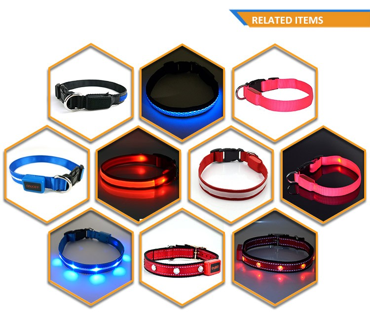 USB Rechargeable LED Pet Collar Dog Accessories TZ-PET6100U Dog Collar and Leash