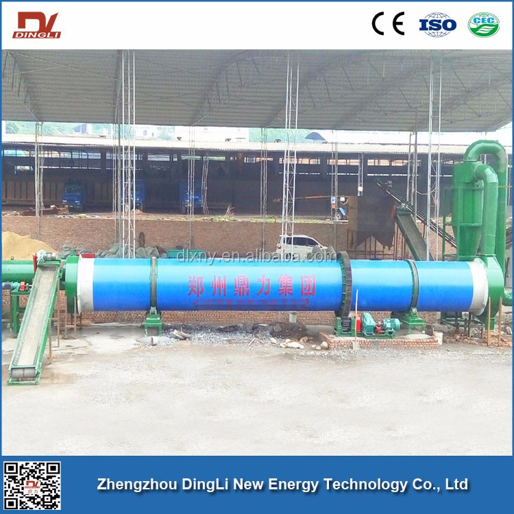 Long Service Life DingLi Patented Bagasse Drying Plant for Making Biomass Fuel