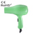 Household LVD CE RoHS Gift PayPal Hair Dryer