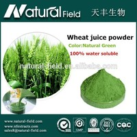 OEM Welcome 100% water soluble wheat germ juice powder