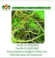 Nourishing liver and kidney and stopping diarrhea chinese dodder seed extract