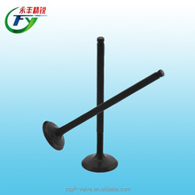 OEM materials GS125 motorcycle for motorcycle parts engine valve