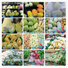 Colorful Fruit Foam Net/EPE Protective Foam Sleeve for Fruit and Flower
