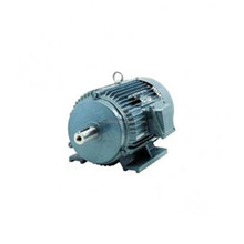 Golden Supplier motor Double Shaft 220/380V AC Three Phase Electric Motor