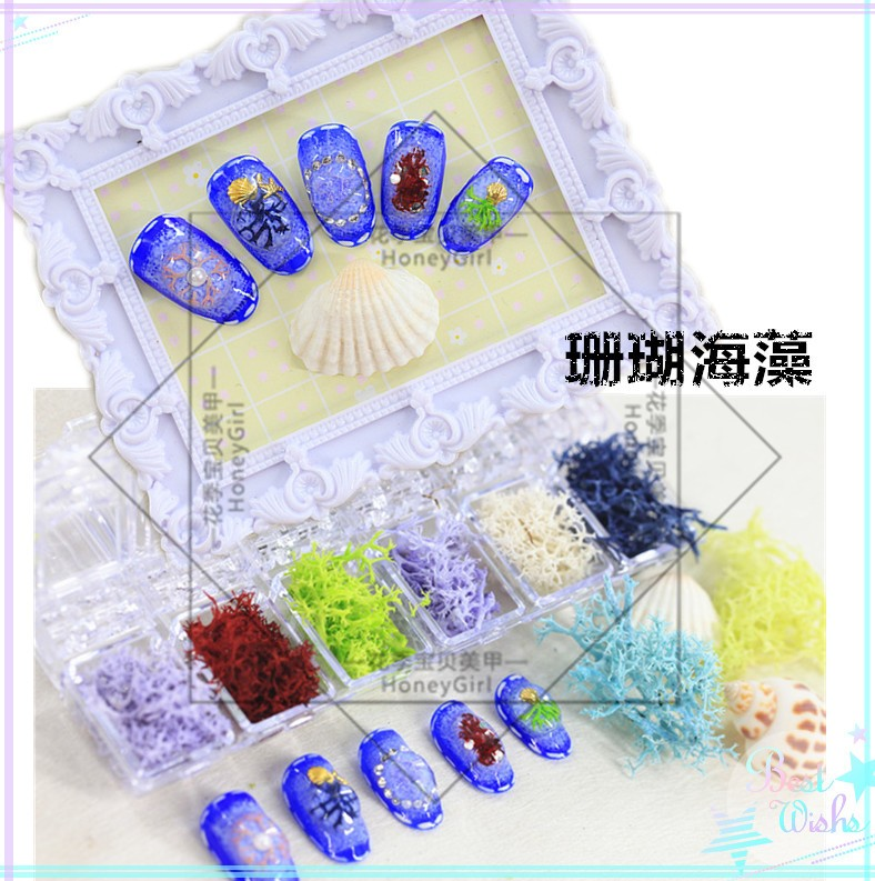 nail art 3D decorations coral dry flower seaweed nail tools