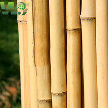 WY T-001 dry and raw tonkin bamboo pole/stakes for large supply wholesale