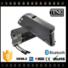 TNE bluetooth customized 12v 10 ah lithium ion battery