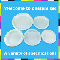 Popular Camping Disposable Plastic Round Plate