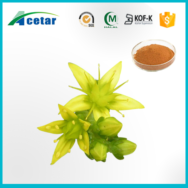 High quality plant extract health care epimedium extract