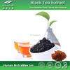 Online Shopping Black Tea Extract, Instant Black Tea Extract Powder,Polyphenols 20%~95%