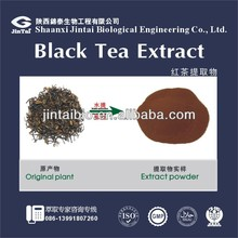 health care and beverages black tea extract