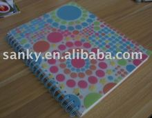 Plastic PVC Transparent Frosted Diary Note Book Cover