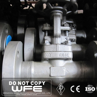 WFE Double Flange Resilient Wedge Forged Steel Gate Valve