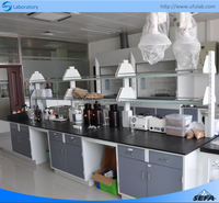 Factory Price with Certification Chemistry Laboratory Workbench Laboratory Equpment Lab Table