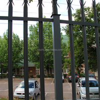 ISO9001 Top Iron and Steel Palisade Security Fencing for garden