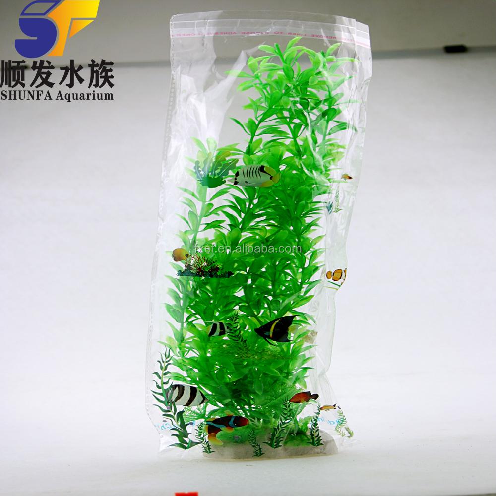groothandel aquariumplanten